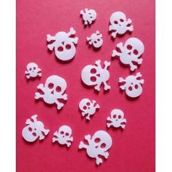 White skull and bones
