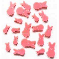 Bunny Acrylic Set
