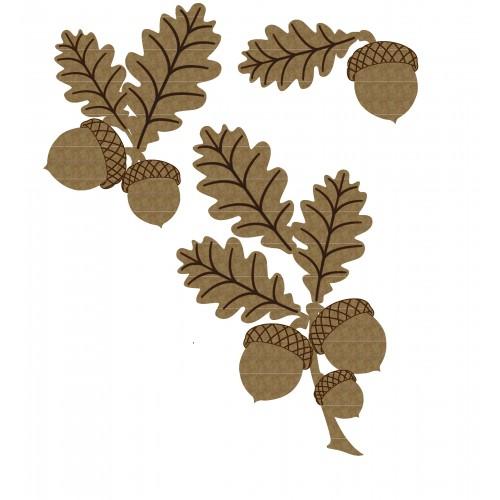 Acorn Clusters - Fall
