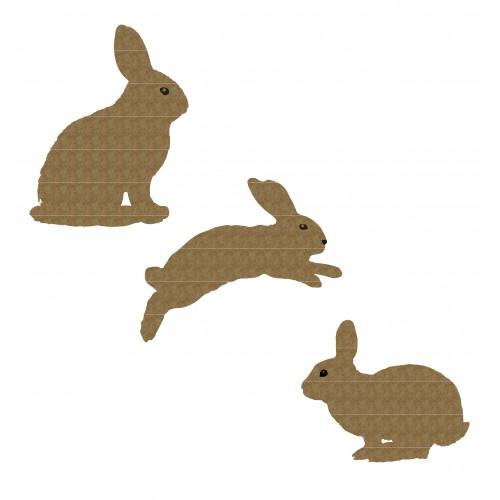 Bunnies - Animals