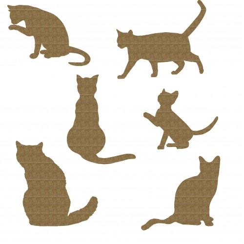 Cat Set - Animals