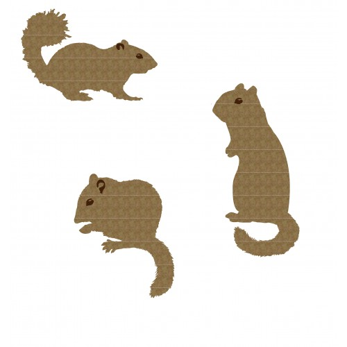 Chipmunk Set - Animals