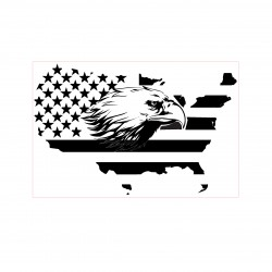 Eagle in Flag Stamp