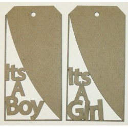 It's a Boy/Girl Tags