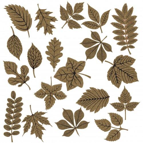 Autumn Leaves - Trees