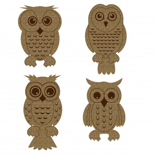 Owl Set - Animals