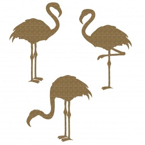 Flamingo - Animals
