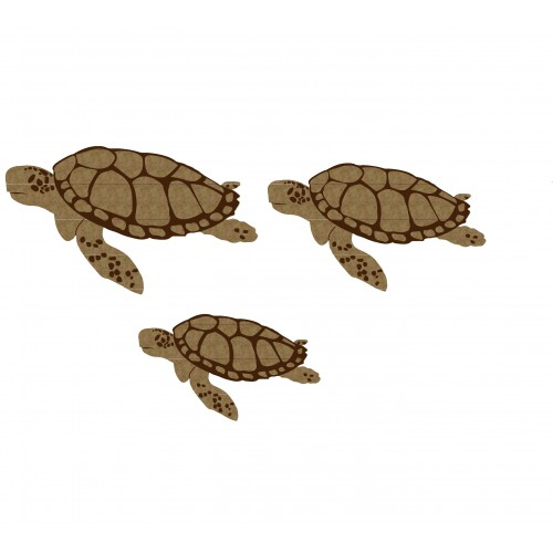 Sea Turtles - Animals