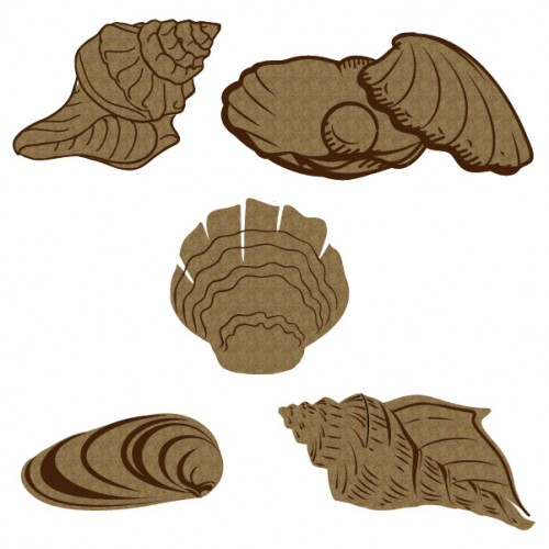 Large Seashells 2 - Chipboard