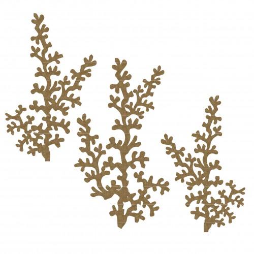 Seaweed 3 - Summer