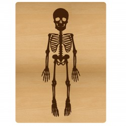 Skeleton PL Card