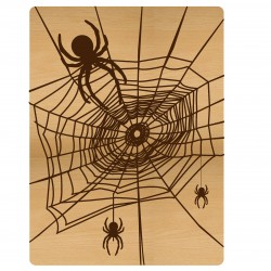 Spider Web Pocket Card