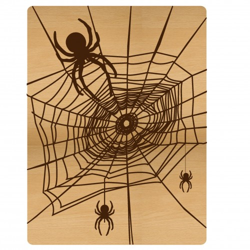 "Spider Web Pocket Card - 3""x4"" Cards"