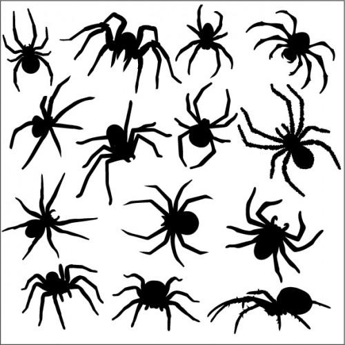 Spider Stencil - Stencils