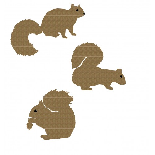 Squirrel Set - Animals