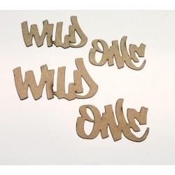 Wild One Title