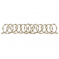 Barbed Wire Border 4