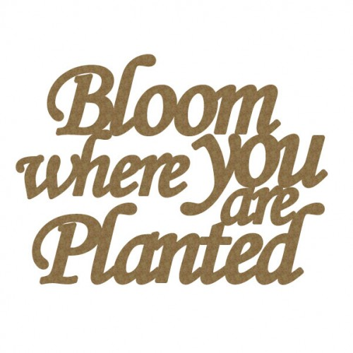 Bloom Where You are Planted - Titles, Quotes & Sayings