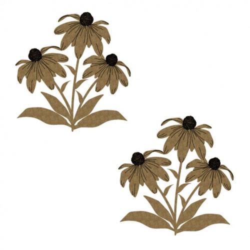 Coneflowers - Flowers