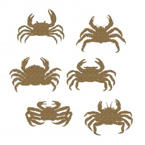 Crabs - Summer