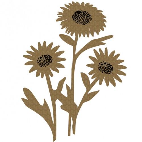 Daisies - Flowers