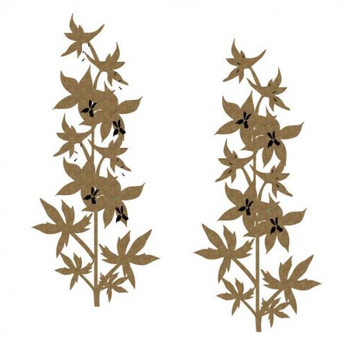 Delphinium - Flowers