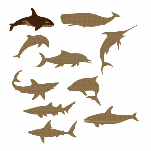 Large Sea Creatures - Animals
