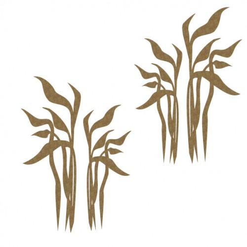 Seaweed - Chipboard