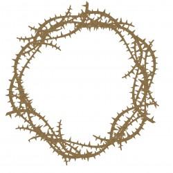 Thorn Frame