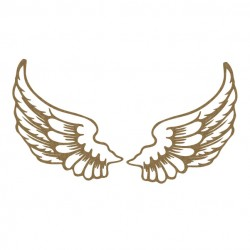 Wings Set 1