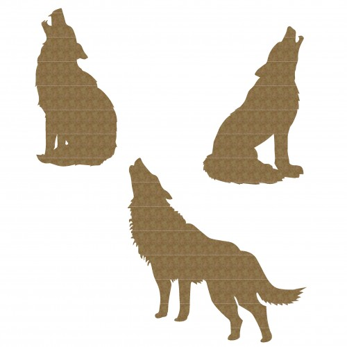 Wolves - Animals