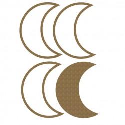 Moon Shaker
