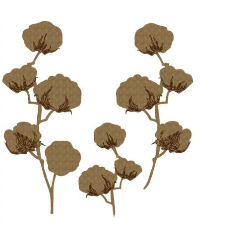 Cotton - Flourishes