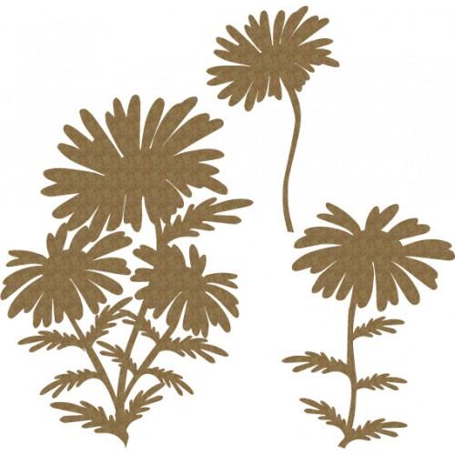 Daisy Set - Flowers