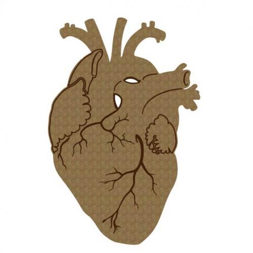 Human Heart - Chipboard