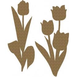 Tulips Set